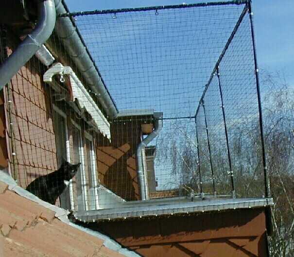 Etwas Ot Nur Fuer Hannover Katzen Balkonnetz